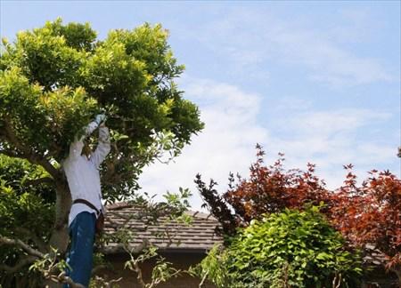 岐阜で空き家の管理を依頼したい方へ~庭の手入れもお任せ~